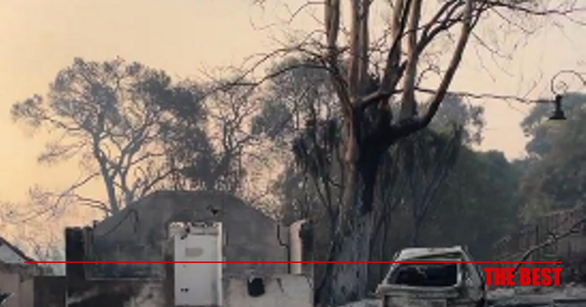 Στο πρώτο φως της … καταστροφής- Ολονύχτια μάχη, 300 πυροσβέστες στο σημείο- ΦΩΤΟ & ΒΙΝΤΕΟ