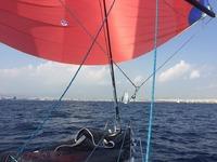 Επιτυχημένη παρουσία του Ιστιοπλοϊκού Ομίλου στο «Athens International Sailing Week»