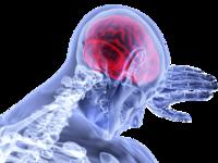 Έλληνες επιστήμονες στις ΗΠΑ θεράπευσαν πειραματόζωα με ένα σύμπτωμα σχιζοφρένειας