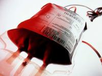 Εθελοντική αιμοδοσία στο 51ο Δημοτικό σχολείο Πατρών