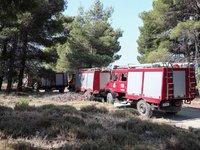 Καμίνι και σήμερα η Δυτική Ελλάδα-Υψηλός ο κίνδυνος πυρκαγιάς