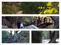 """Το """"κρυφό"""" μέρος στην Πάτρα που αγαπούν οι πεζοπόροι, τα ζευγαράκια και οι...νεράιδες!"""