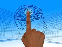 Τι είναι  συνείδηση και τι δεν είναι; Πέντε κοινοί μύθοι