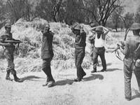 45 χρόνια από την τουρκική εισβολή στην Κύπρο : Οι πατρινοί που πολέμησαν διηγούνται...