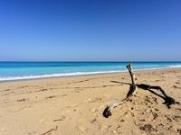 Μια μαγευτική παραλία είναι αυτό που θες!