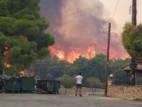Οι πυρκαγιές του καλοκαιριού στην Ελλάδα έκαψαν έκταση ίση με τη Σαλαμίνα!