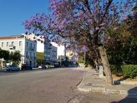 """Ένα """"όμορφο"""" σκηνικό χωριού, στο κέντρο της Πάτρας - ΦΩΤΟ"""