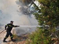 Πυρκαγιά στις Ερυθρές Μάνδρας