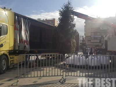 Σε ρυθμούς Χριστουγέννων η πλατεία Γεωργίου! Στήνουν το δέντρο- ΦΩΤΟ