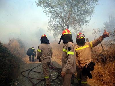 Σε εξέλιξη πυρκαγιά στην περιοχή Κεφαλάς Σπάρτης