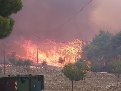 Ζάκυνθος: 7.500 στρέμματα καμένου δάσους σε 83 πυρκαγιές φέτος