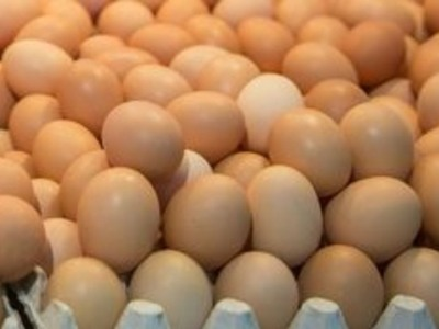Τρώτε πολλά αυγά; Μήπως να το ξανασκεφτείτε...