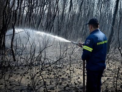 Πυρκαγιά κοντά στο αεροδρόμιο της Κεφαλονιάς