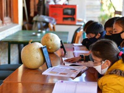ΝΔ: fake news η τηλεκπαίδευση παιδιών σε...