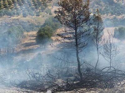 Πυρκαγιά κοντά στην Αγία Άννα Γούμερου Η...