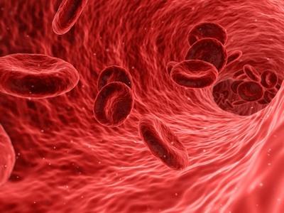 Πολυδύναμα, ολοδύναμα, παντοδύναμα βλαστοκύτταρα, δώρο ζωής