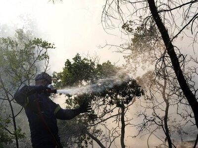 Πηνεία: Πυρκαγιά σε δασική έκταση