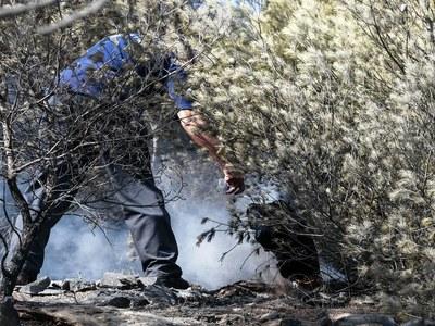 Υπό έλεγχο τέθηκε η φωτιά στη Ζάκυνθο
