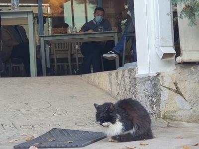 Η χαλαρή όψη της επίσκεψης Τσίπρα