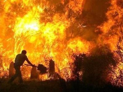 Σπάσαμε νέο...ρεκόρ: 230 φωτιές σε μόλις τρεις ημέρες!!!