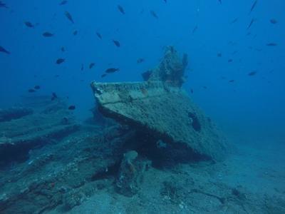 """Μια βουτιά στο βυθό της Κάτω Βασιλικής - Το ναυάγιο του """"ΠΛΕΙΑΣ"""""""