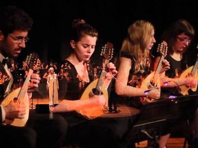 Συναυλία της Ορχήστρας Νυκτών Εγχόρδων Π...