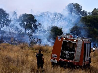 Τώρα! Μεγάλη φωτιά στη Δροσιά Τριταίας – Ισχυρή δύναμη της Πυροσβεστικής