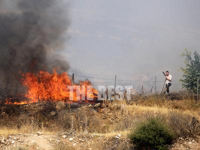 Αυτά είναι τα αίτια των πυρκαγιών σε Ελε...