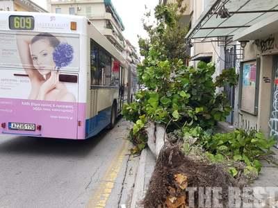 Θυελλώδεις άνεμοι στην Πάτρα έριξαν κολόνες και δένδρα πάνω σε λεωφορεία!