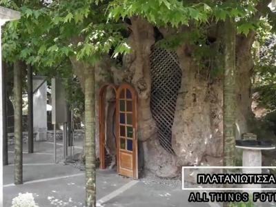 Το εκκλησάκι της «Παναγίας της Πλατανιώτισσας» και η ιστορία του - ΒΙΝΤΕΟ