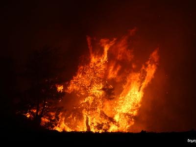 Πολύ υψηλός κίνδυνος πυρκαγιάς την Τρίτη...