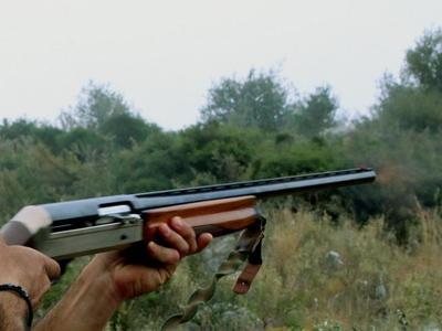 Ηλεία: 34χρονος φέρεται να πυροβόλησε κα...