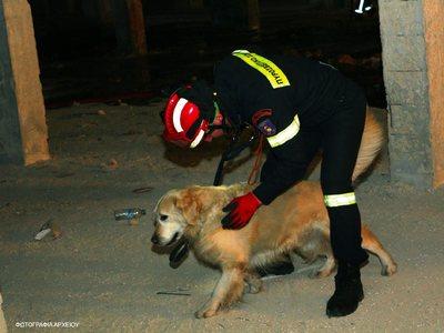 Ο σκύλος της ΕΜΑΚ εντόπισε πεσμένο σε καλαμιές 80χρονο που είχε εξαφανιστεί