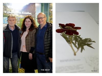 Ξέρατε ότι η Πάτρα έχει Bοτανικό Mουσείο και κάνει πρωτοποριακές έρευνες; Μάθαμε για το τσάι της Πελοποννήσου που βοηθά στο Αλτσχάιμερ