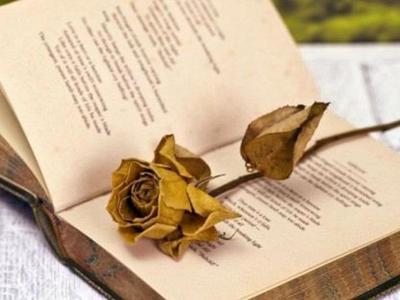 Πως θα γιορταστεί η σημερινή Παγκόσμια Ημέρα Ποίησης