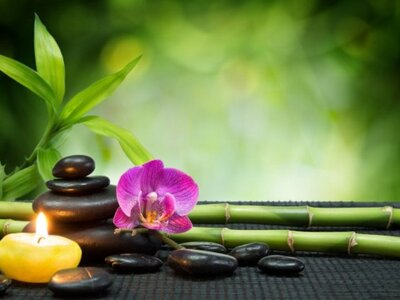 Φενγκ Σούι: Τα πράγματα που πρέπει να απ...