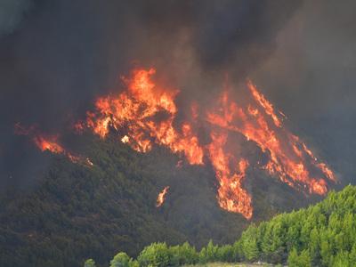 Φωτιά στην Ηλεία: Ανακρίνεται ύποπτος για εμπρησμό