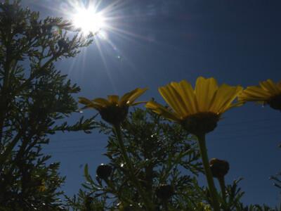 Καιρός: Φθινοπωρινός καύσωνας την Κυριακ...