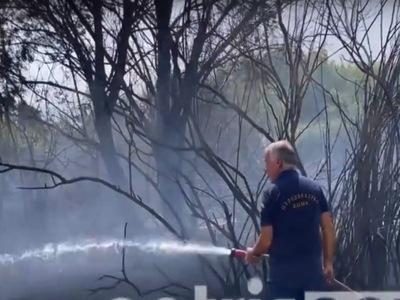 Φωτιά ΤΩΡΑ κοντά στη Μανωλάδα Ηλείας