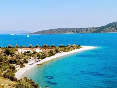 Δράσεις σε Ιόνιο, Κορινθιακό κι αλλού για τη σωτηρία των Ελληνικών θαλασσών από την υπεραλίευση