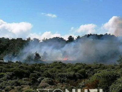 Φωτιά στην Καράβα Μυτιλήνης από άνδρες των ΜΑΤ