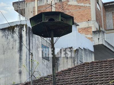 Ένας παραδοσιακός περιστερώνας στην Πάτρα - ΦΩΤΟ
