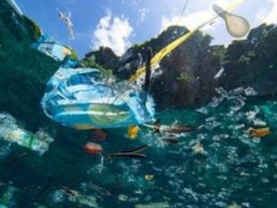Το 50% των απορριμμάτων των ελληνικών θαλασσών είναι κουτιά, μπουκάλια και σακούλες