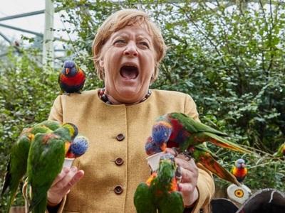Γερμανία: Όταν παπαγάλος δάγκωσε τη Μέρκ...
