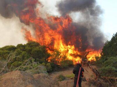 Αχαΐα-Φωτιά: Περιορίζεται το μέτωπο στα Καλάβρυτα