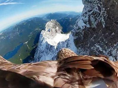 Κάμερα σε αετό καταγράφει το λιώσιμο των πάγων