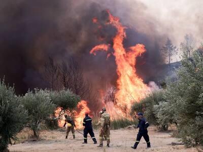 Φωτιά-Ηλεία: Έφτασαν στο δρόμο οι φωτιές...