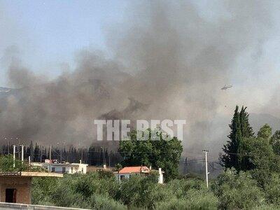 Μεγάλη φωτιά στην Πάτρα: Πυρκαγιά στην Ελεκίστρα-Ζητήθηκε εκκένωση σπιτιών στην Εγλυκάδα- Καίγονται σπίτια και ακούγονται εκρήξεις από το Σούλι- Πανικός στον Ρηγανόκαμπο- Καίγεται ο καταυλισμός των Ρομά (photo- ΒΙΝΤΕΟ)