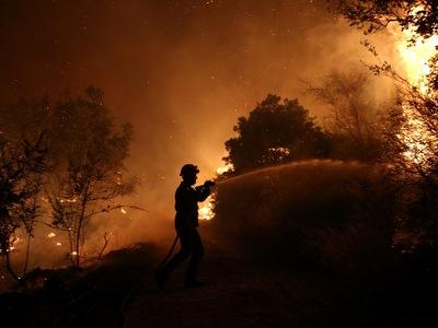 Στάχτη 150 στρέμματα στα Τσαμέικα Δυτικής Αχαΐας – 33 δασικές πυρκαγιές σε ένα 24ωρο