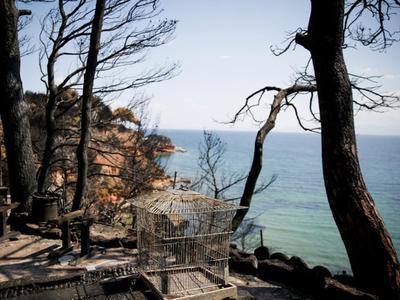 Επίδομα ανεργίας σε εργαζόμενους των οποίων ανεστάλη η εργασία, εξαιτίας των πυρκαγιών